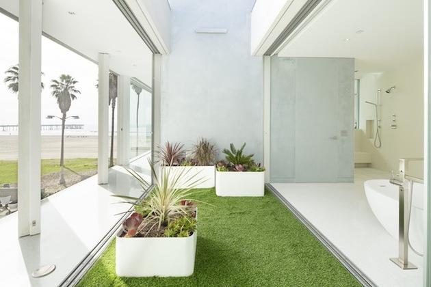 local-artists-multipurpose-california-beach-home-office-grass.jpg
