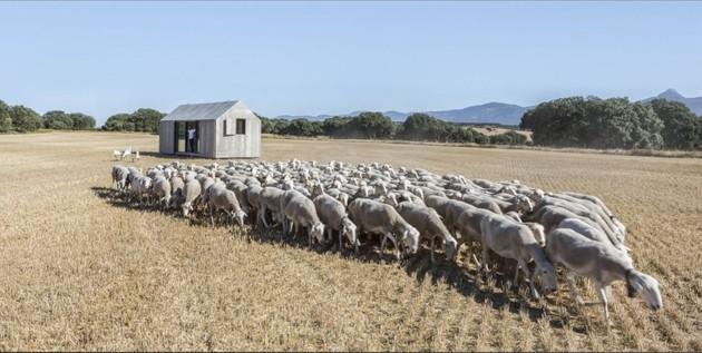 modern-prefab-two-spanish-firm-herd.jpg