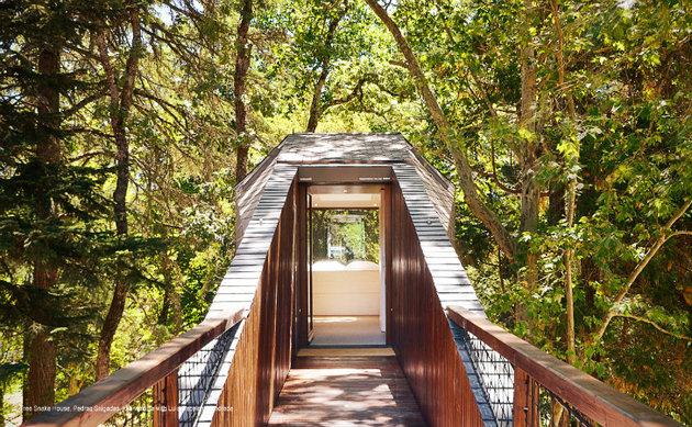spectacular-tree-snake-houses-12.jpg