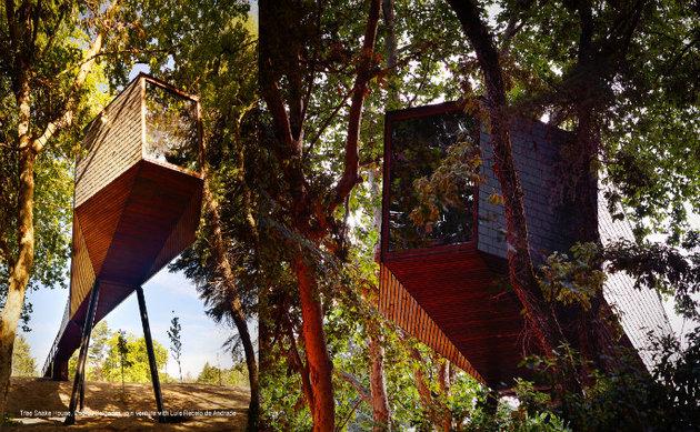 spectacular-tree-snake-houses-13.jpg