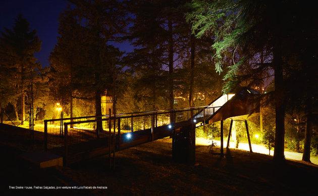 spectacular-tree-snake-houses-14.jpg