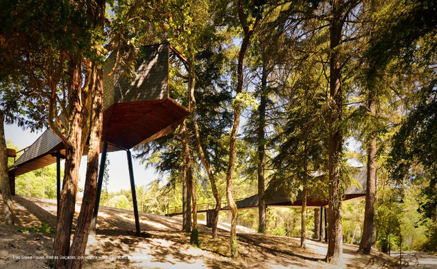 spectacular tree snake houses 2 thumb 630x389 15477 Spectacular Tree Snake Houses in Pedras Salgadas, Portugal