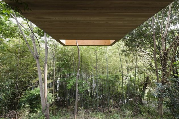 various-wood-finishes-populate-uniquely-natural-japanese-home-overhang-from-below.jpg