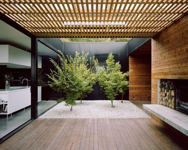 courtyard-house-built-for-severe-tasmanian-weather-7-courtyard-leaves.jpg