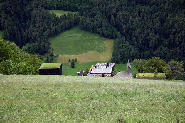 home-with-sauna-green-roof-5-far-uphill.jpg