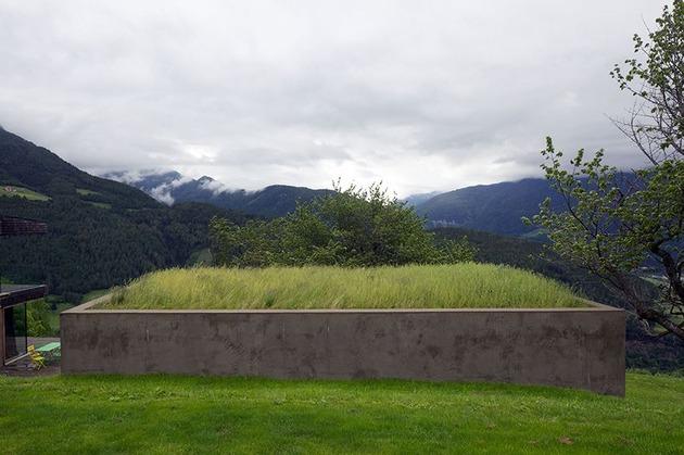 home-with-sauna-green-roof-6-grass-sauna-roof.jpg