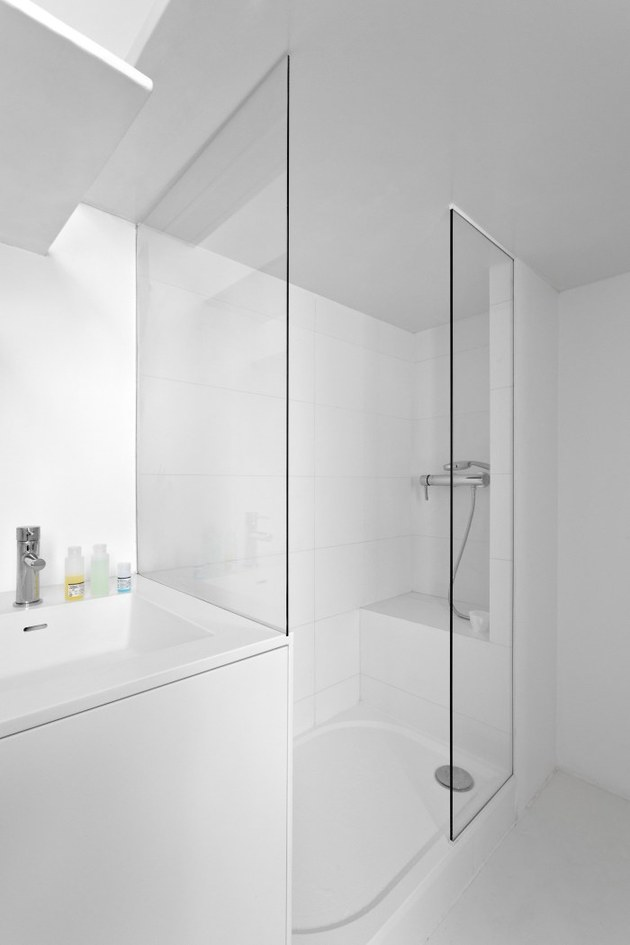 small-floorplan-paris-apartment-renovated-with-modern-lighting-solutions-12-shower.jpg