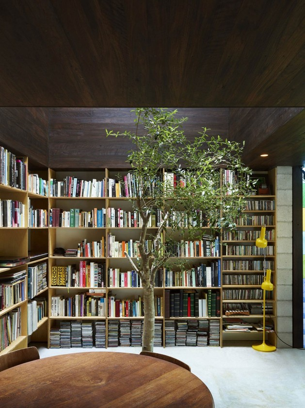 coloured-glass-walls-sparkle-from-cottage-addition-4-library.jpg