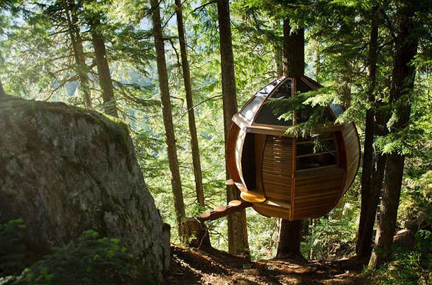 suspended wooden pod cabin built around tree trunk 1 rock face right thumb 630x417 28793 Suspended Wooden Pod Cabin Built Around Tree Trunk