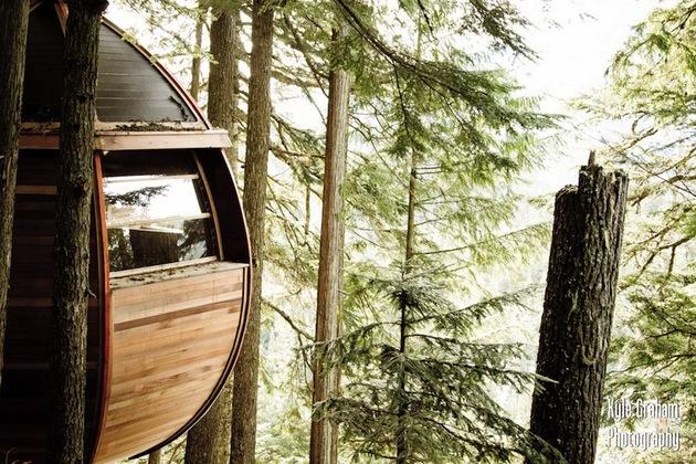 suspended-wooden-pod-cabin-built-around-tree-trunk-11-close-elevation.jpg
