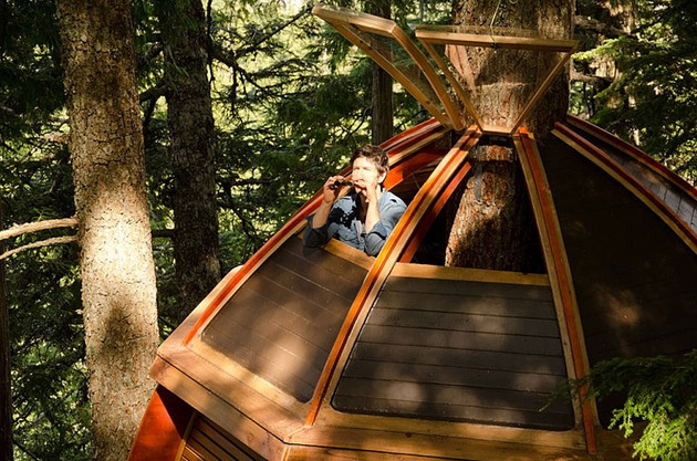 suspended-wooden-pod-cabin-built-around-tree-trunk-13-roof-hatch.jpg