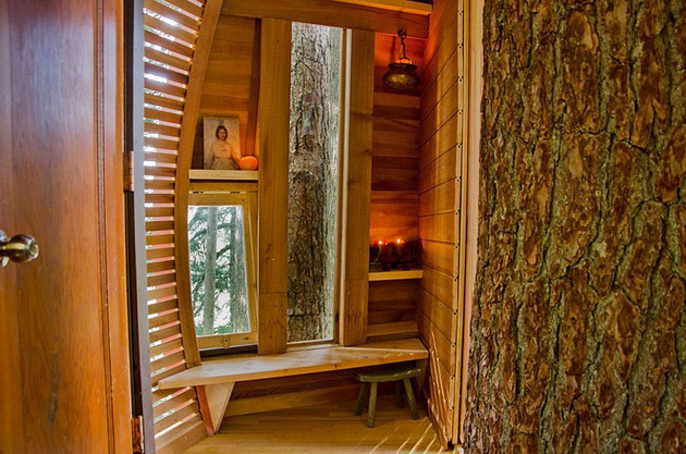 suspended-wooden-pod-cabin-built-around-tree-trunk-14-inside-door.jpg