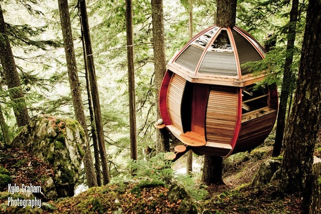 suspended wooden pod cabin built around tree trunk 2 right above angle thumb 630x420 28795 Suspended Wooden Pod Cabin Built Around Tree Trunk