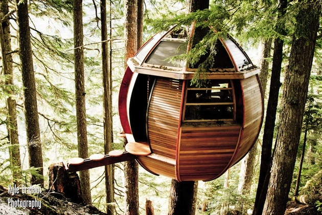 suspended-wooden-pod-cabin-built-around-tree-trunk-3-right-side.jpg