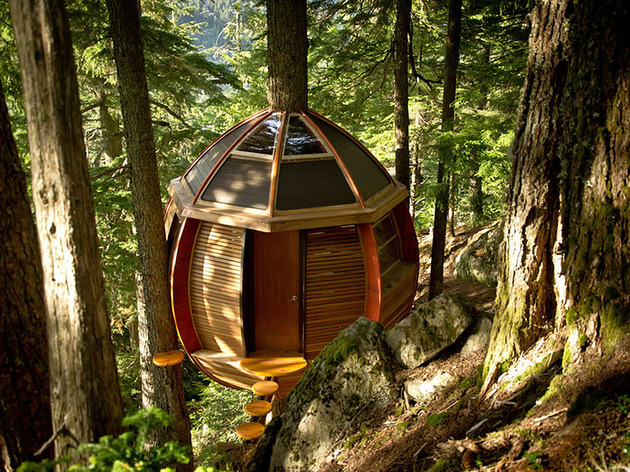 suspended-wooden-pod-cabin-built-around-tree-trunk-4-rock-face-door.jpg