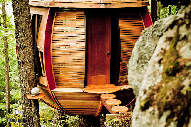 suspended-wooden-pod-cabin-built-around-tree-trunk-5-entry-path.jpg