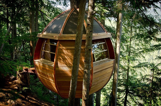 suspended-wooden-pod-cabin-built-around-tree-trunk-9-right-side-far.jpg