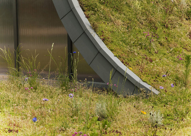 underground-wave-house-with-wildflower-and-herb-exterior-11.jpg
