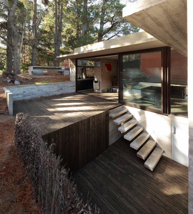 concrete-steel-home-tucked-pine-forest-6-lower-deck.jpg