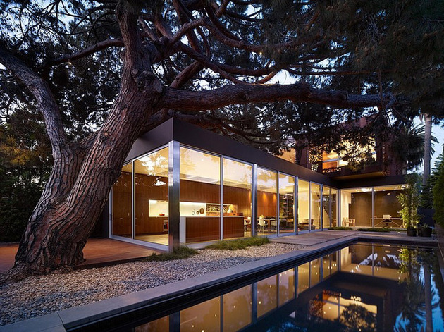 contemporary-steel-and-glass-house-designed-around-massive-tree-13.jpg