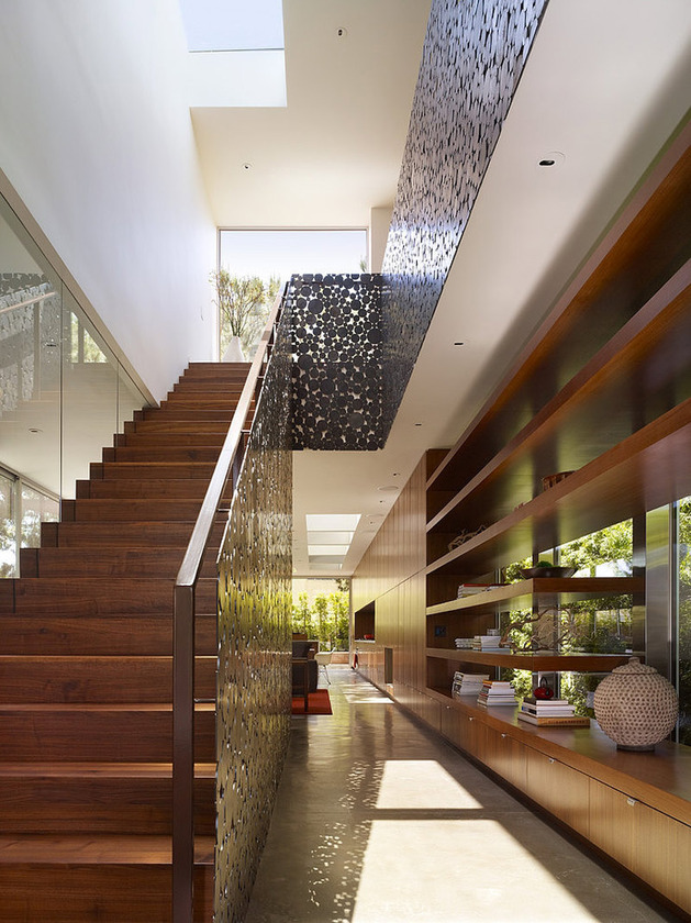 contemporary-steel-and-glass-house-designed-around-massive-tree-3.jpg