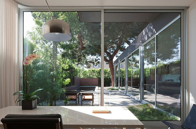 contemporary-steel-and-glass-house-designed-around-massive-tree-6.jpg