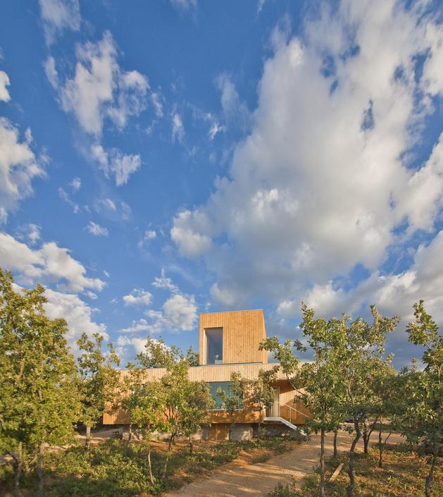small-forest-cabin-designed-built-environmental-standards-2-site.jpg