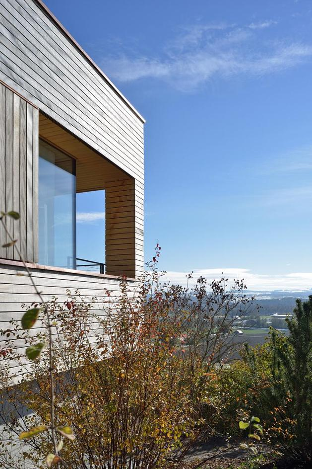 sustainable-geometric-house-rooftop-terrace-15-exterior.jpg