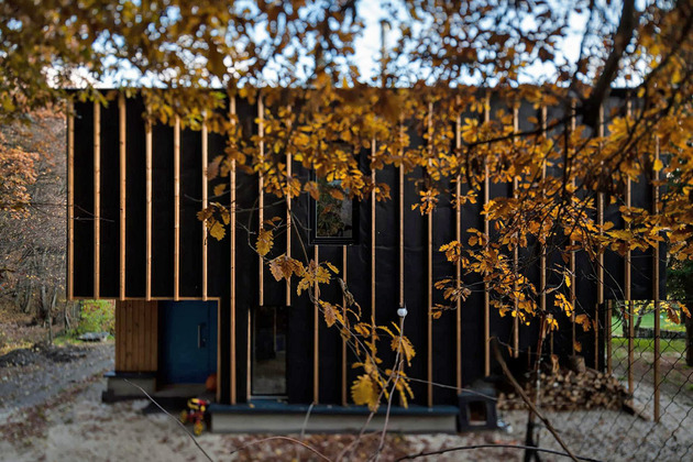 timber-cabin-built-two-days-5-entry.jpg
