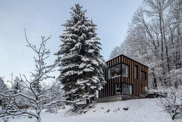 timber-cabin-built-two-days-7-windows.jpg