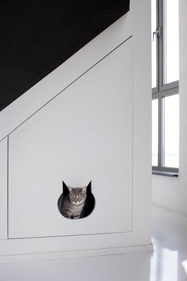 water-tower-converted-private-residence-15-cat-hole.jpg