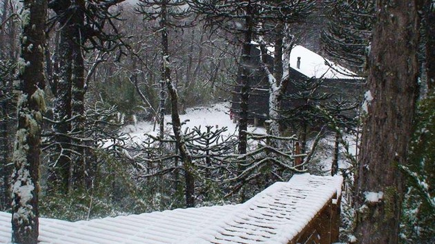 winter-cabin-accessed-elevated-walkway-4-wood-path.jpg