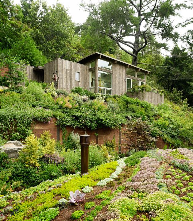 artist studio overlooks guest cabin rooftop garden 1 site thumb autox720 34305 Artist Studio overlooks Guest Cabin with Rooftop Garden