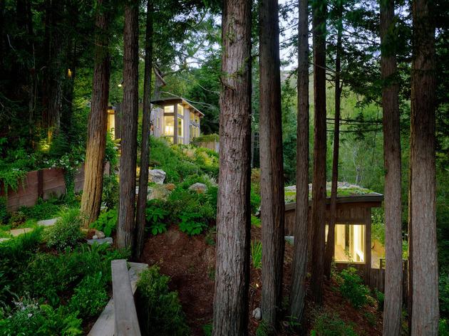 artist-studio-overlooks-guest-cabin-rooftop-garden-11-evening.jpg