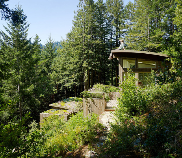 artist-studio-overlooks-guest-cabin-rooftop-garden-4-studio-deck.jpg