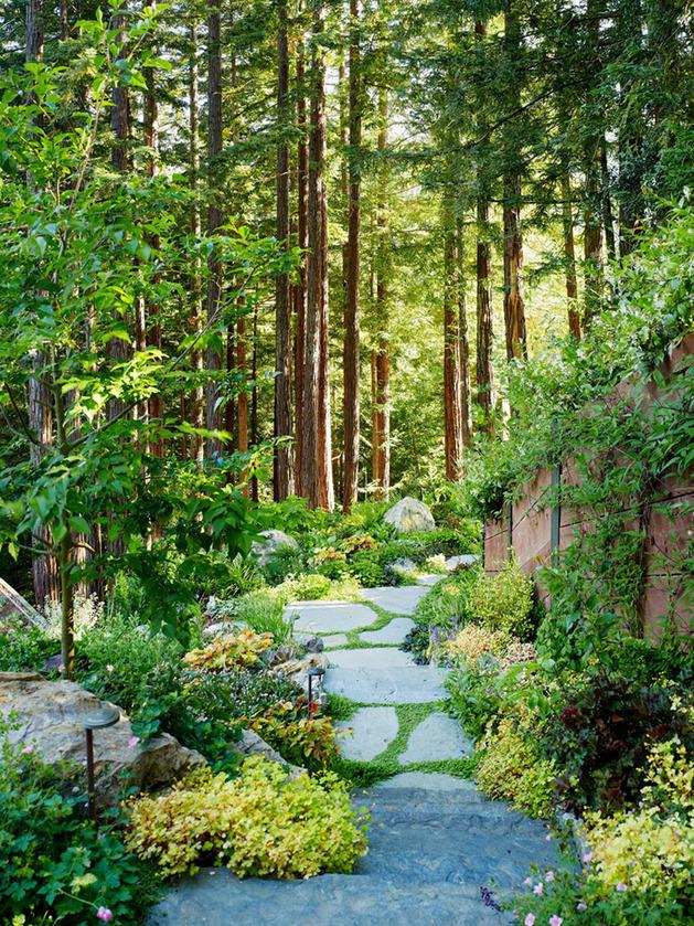 artist-studio-overlooks-guest-cabin-rooftop-garden-9-path.jpg