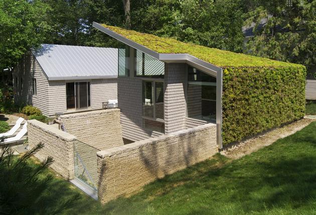 garden house with lush leafy facade 1 thumb 630xauto 34485 House with Vertical Garden Facade