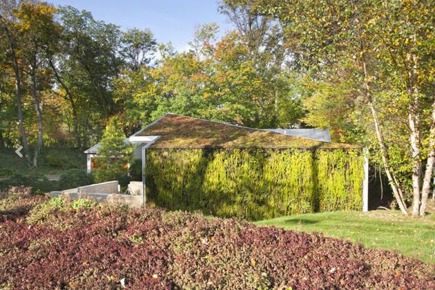 garden house with lush leafy facade 2 thumb 630xauto 34487 House with Vertical Garden Facade