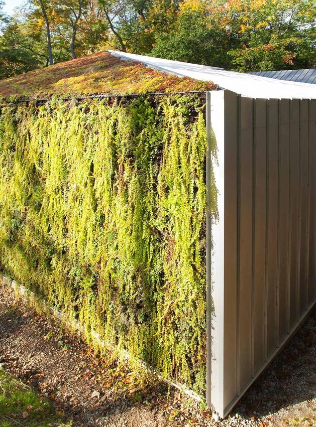 garden-house-with-lush-leafy-facade-3.jpg