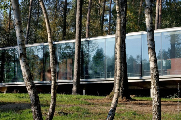 glass pavilion mirroring secular pine tree forest 1 thumb 630xauto 34169 See though Glass Box House has Best Views of the Forest