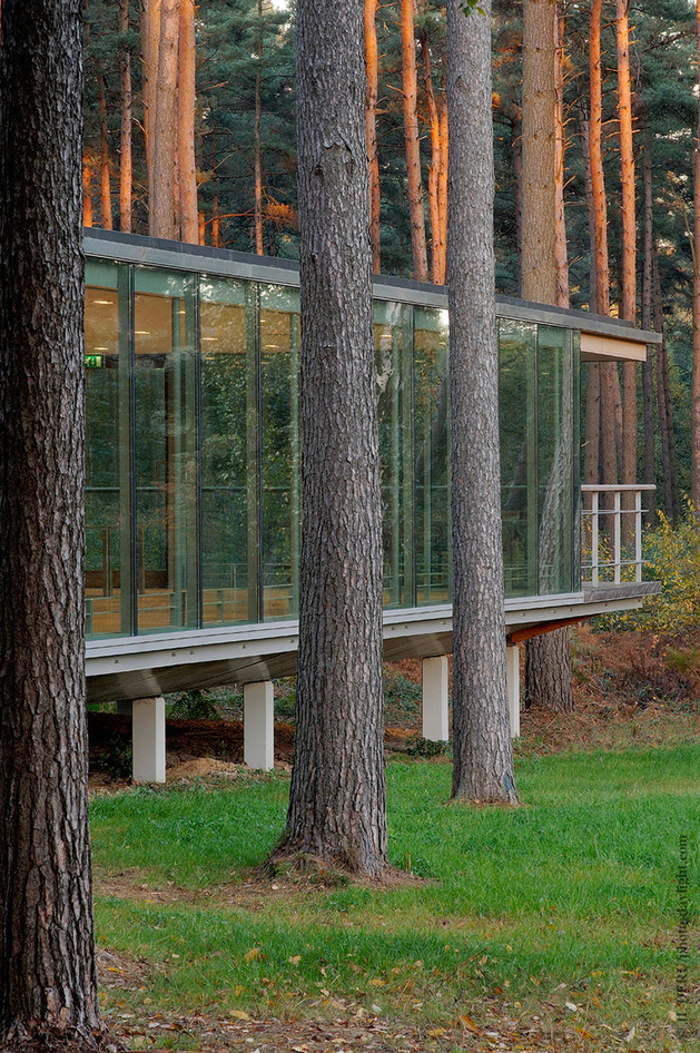 glass pavilion mirroring secular pine tree forest 2 thumb autox946 34171 See though Glass Box House has Best Views of the Forest