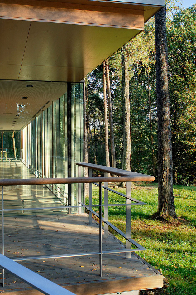 glass-pavilion-mirroring-secular-pine-tree-forest-5.jpg
