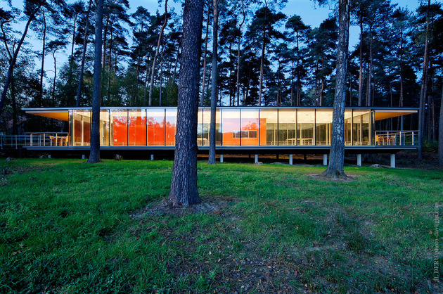 glass-pavilion-mirroring-secular-pine-tree-forest-9.jpg