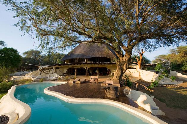 organic-holiday-home-overlooks-2-rivers-pool-7-tree.jpg