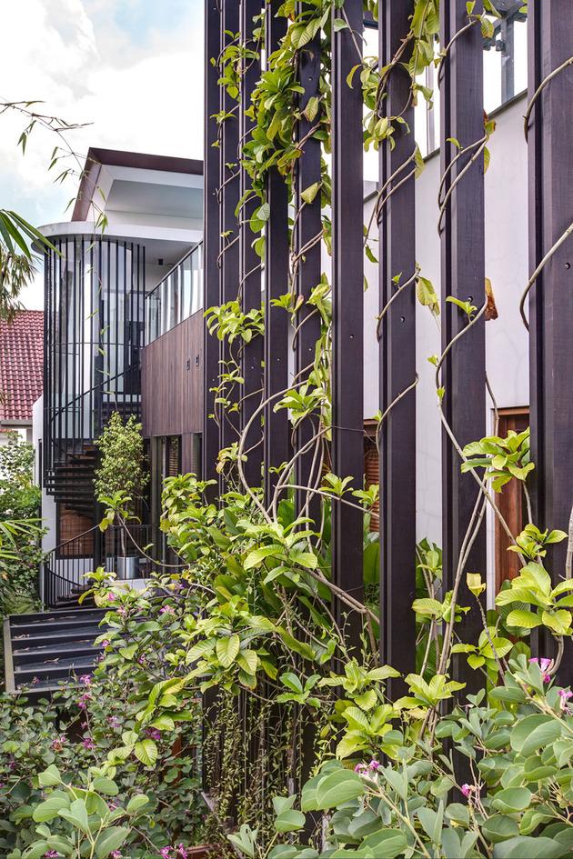 lush-gardens-peekaboo-roof-pool-define-contemporary-home-15-stairs.jpg