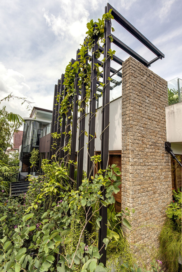 lush-gardens-peekaboo-roof-pool-define-contemporary-home-5-trellis.jpg