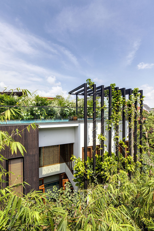 lush-gardens-peekaboo-roof-pool-define-contemporary-home-7-trellis.jpg