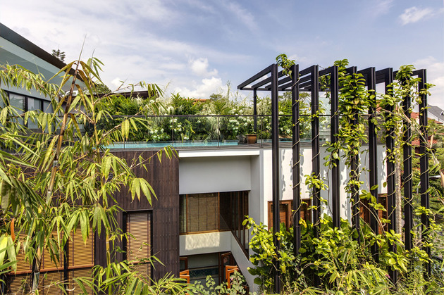 lush-gardens-peekaboo-roof-pool-define-contemporary-home-8-trellis.jpg