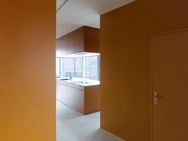 concrete-homesurrounded-vineyard-shades-brown-12-colour.jpg