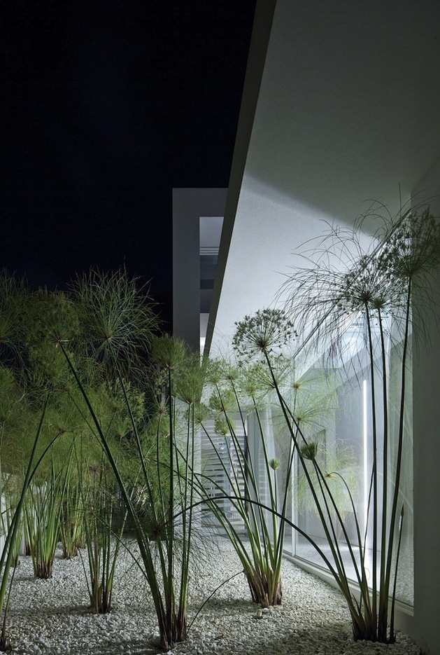 minimal-house-with-hangar-style-rear-facade-9-side-plants.jpg